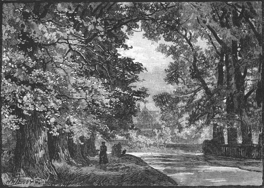 Associate Product MALDEN AND MORDEN. Worcester Park 1888 old antique vintage print picture