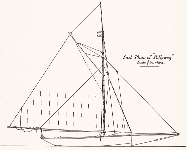 Associate Product YACHTS. Centre-board. Sail plan of 'Pollywog'-1 foot 1891 old antique print