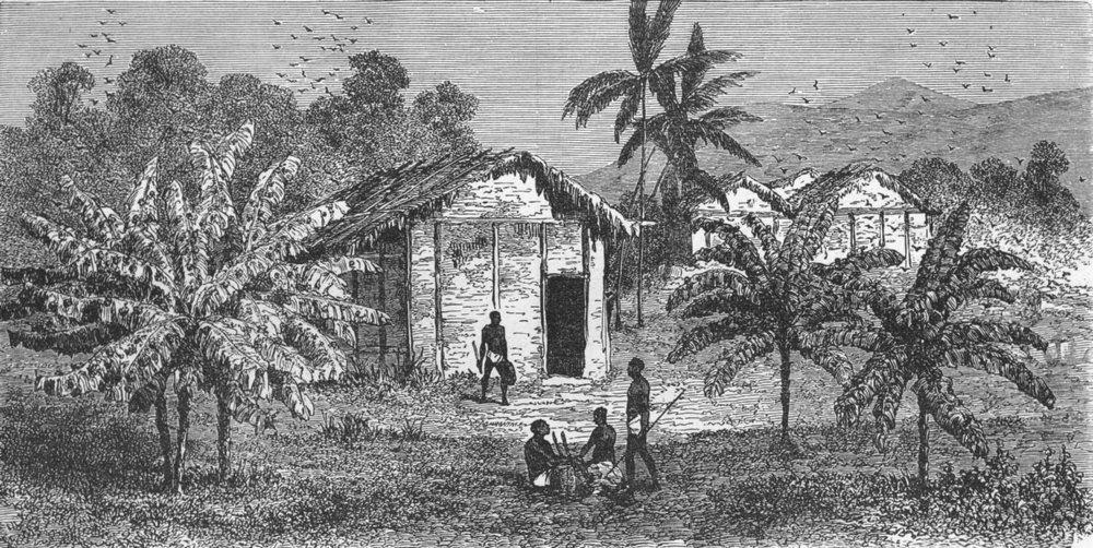 Associate Product GABON. Fetiche Banana Trees 1880 old antique vintage print picture