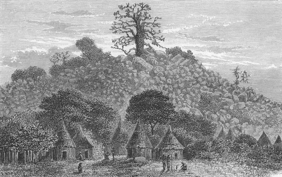 Associate Product MALI. Baobab tree of Kouroundingkoto 1880 old antique vintage print picture