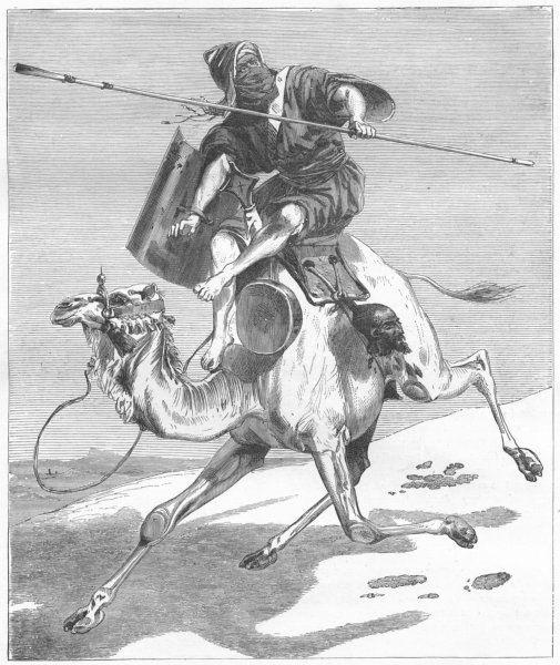 CAMELS. Moorish Warrior 1880 old antique vintage print picture