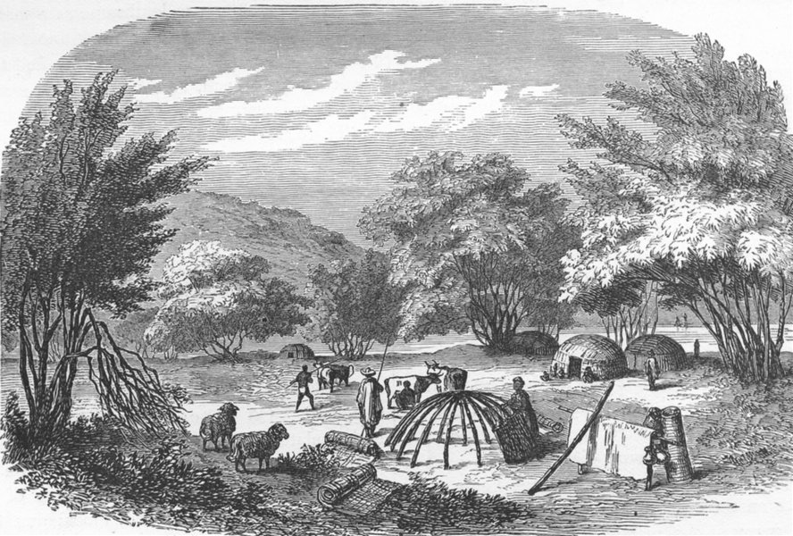 Associate Product SOUTH AFRICA. Natal & Zululand. Kafir Kraal 1880 old antique print picture