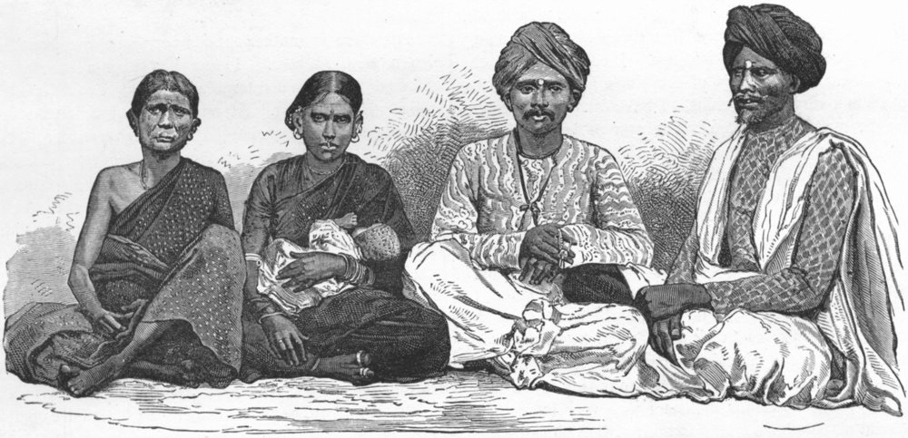 INDIA. Naturalist, NW Provinces. My Domestics 1880 old antique print picture