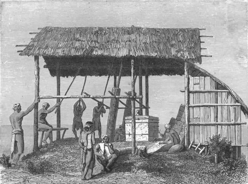 Associate Product TRIBAL. Borneo. Dyaks building house 1880 old antique vintage print picture