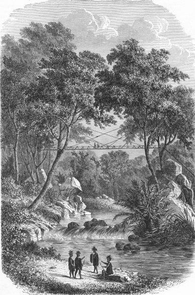 Associate Product BRIDGES. Borneo. Bamboo Bridge of West Dyaks 1880 old antique print picture