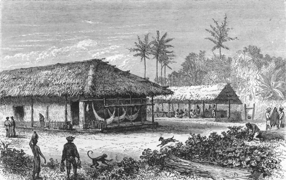 Associate Product BRAZIL. Rio de Janeiro & Organ Mountains. Farm in 1880 old antique print