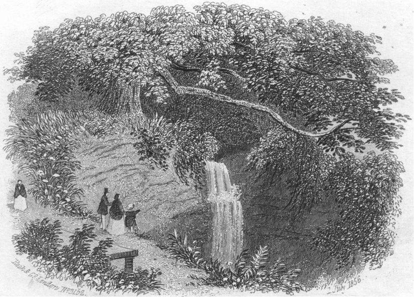 Associate Product SUSSEX. Fairlight glen, Hastings. Rock 1860 old antique vintage print picture