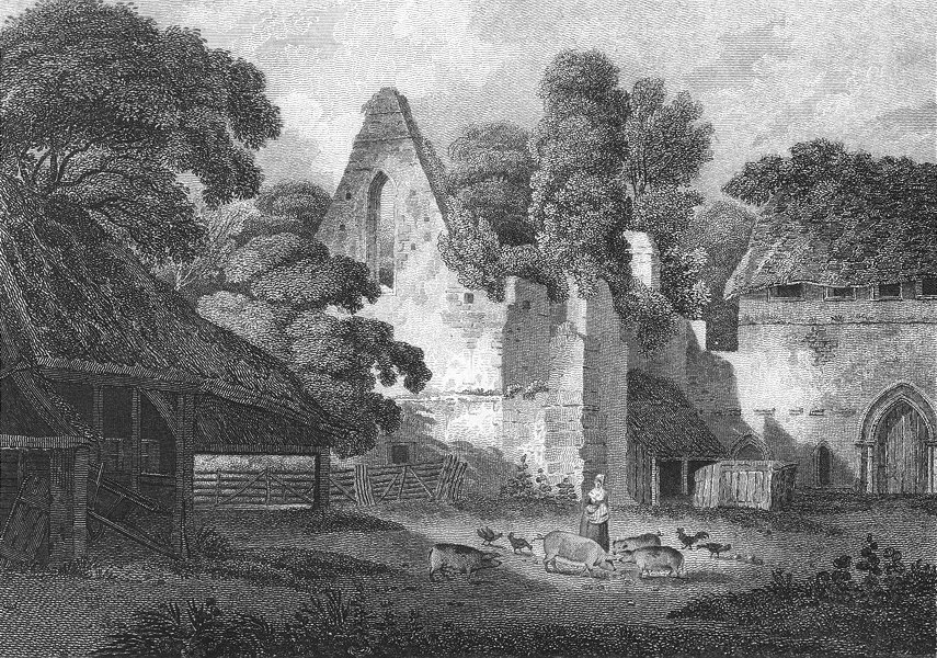 Associate Product BUCKS. Burnham Abbey. Lady feeding poultry pigs 1808 old antique print picture
