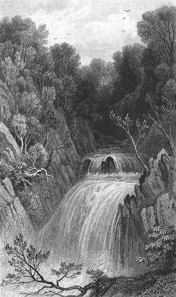 Associate Product WALES. Fall, Pont-y-Monach. Cardigan waterfall c1831 old antique print picture
