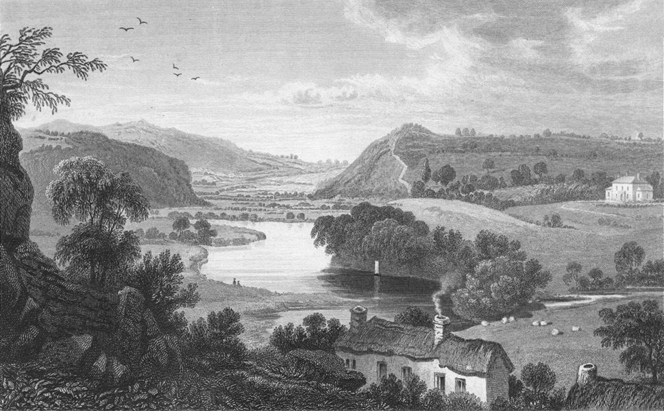 Associate Product CARDIGANSHIRE. Vale of Teify, Newcastle. I River c1831 old antique print