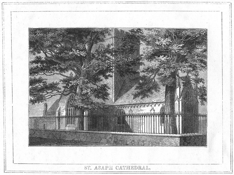 Associate Product WALES. St Asaph Cathedral. Flint 1830 old antique vintage print picture
