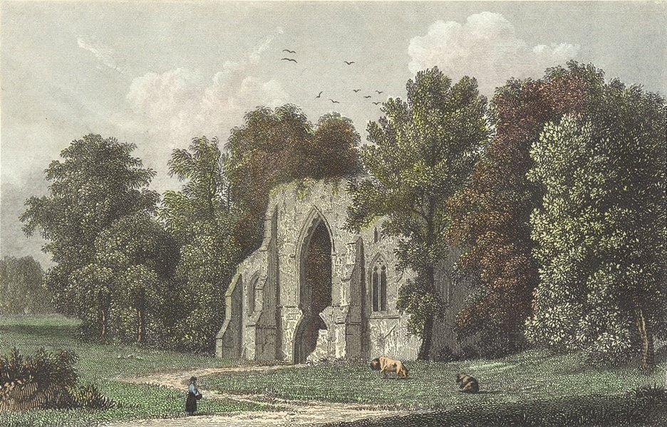 Associate Product HANTS. Netley Abbey, west Window. Westall-Finden c1833 old antique print