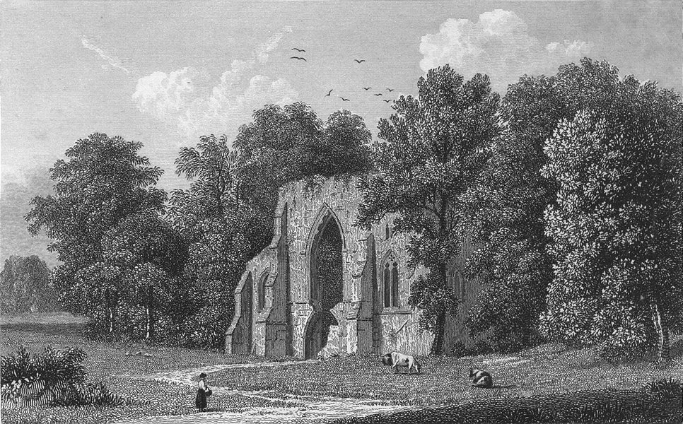 Associate Product HANTS. Netley Abbey, west window. Westall-Finden 1832 old antique print
