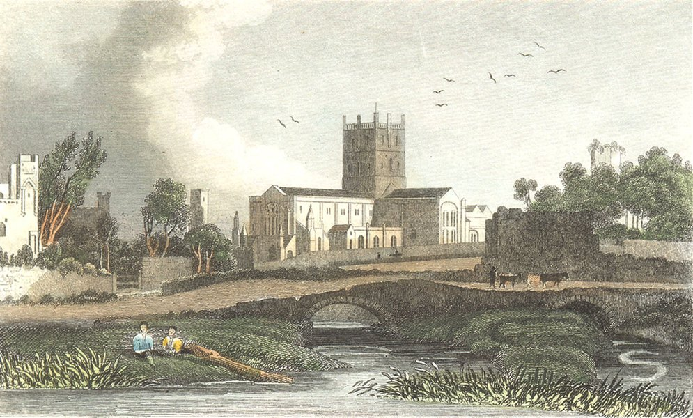 Associate Product ST DAVID'S. Cathedral, Pembrokeshire. St David's 1835 old antique print