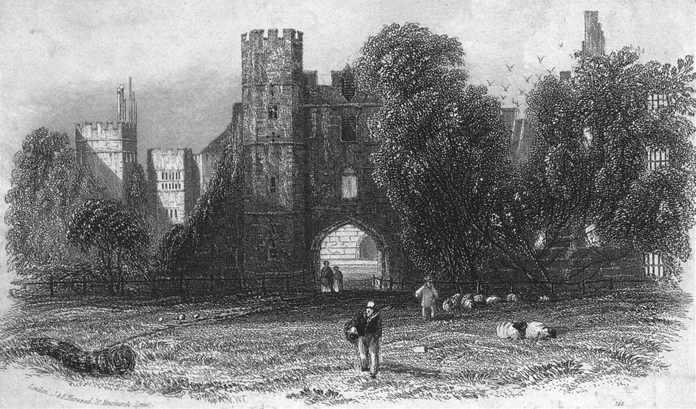 Associate Product SUSSEX. Cowdray Ruins c1855 old antique vintage print picture