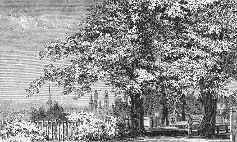 Associate Product ZURICH. Hohen Promenade. Weber 1879 old antique vintage print picture