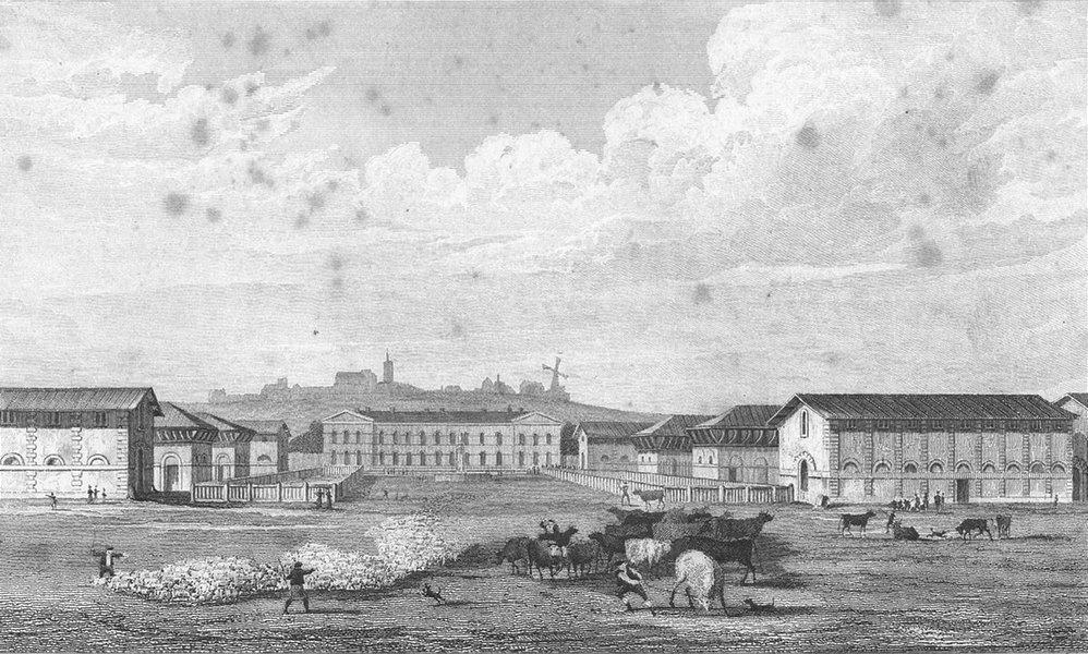 Associate Product PARIS. Abattoir, Montmartre. France. Pugin, cows 1828 old antique print