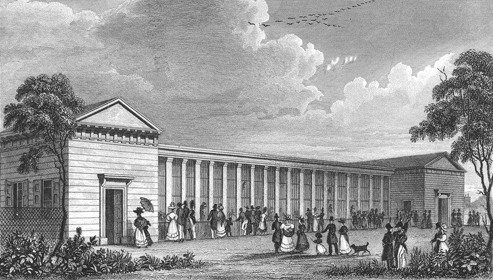 PARIS. Menagerie Jardin Plantes. dog 1828 old antique vintage print picture