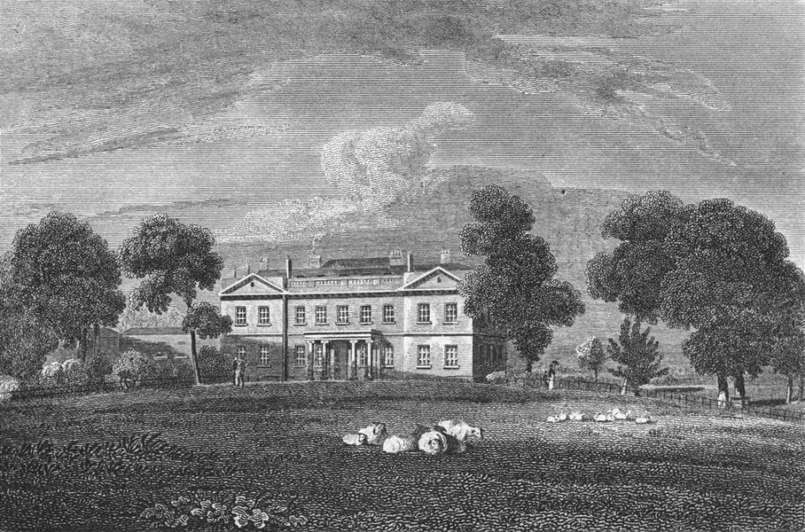 STANMORE. House Lady Aylesford, Mddx. Sheep 1815 old antique print picture