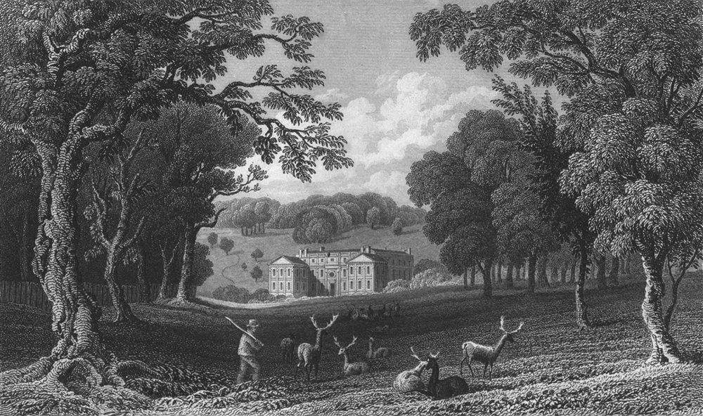 ISLE OF WIGHT. Appuldurcombe Pk Lord Yarborough's c1840 old antique print