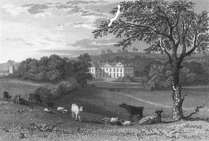 Associate Product LEICS. Lowesby Hall, Leicestershire. Jones 1829 old antique print picture