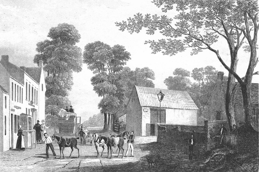 Associate Product LINCS. Spittal. Saunders Several Horses Busy 1836 old antique print picture