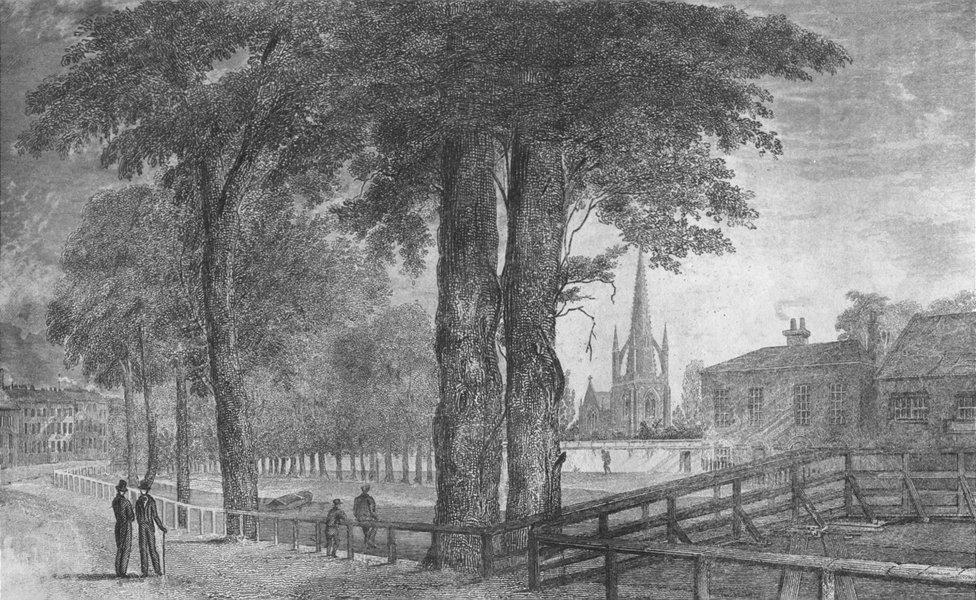 Associate Product LINCS. Spalding. Saunders under trees 1836 old antique vintage print picture