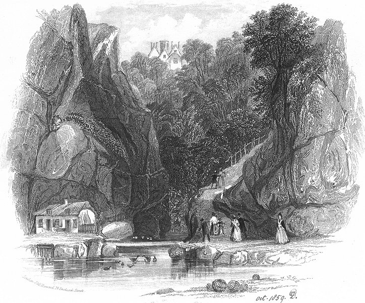 Associate Product IOW. Shanklin Chine. SHANLKIN. Harwood 1841 old antique vintage print picture
