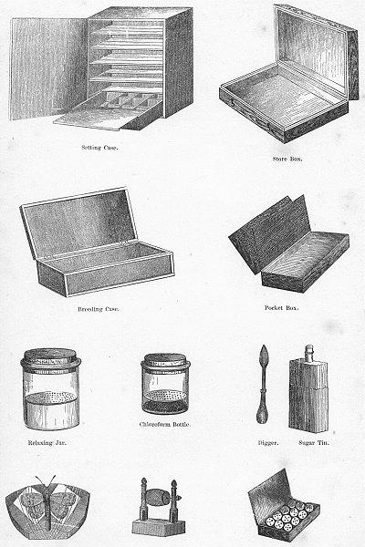 Associate Product MARKETS. Cases, Boxes, Tins, Jars, Bottles, Spool c1880 old antique print