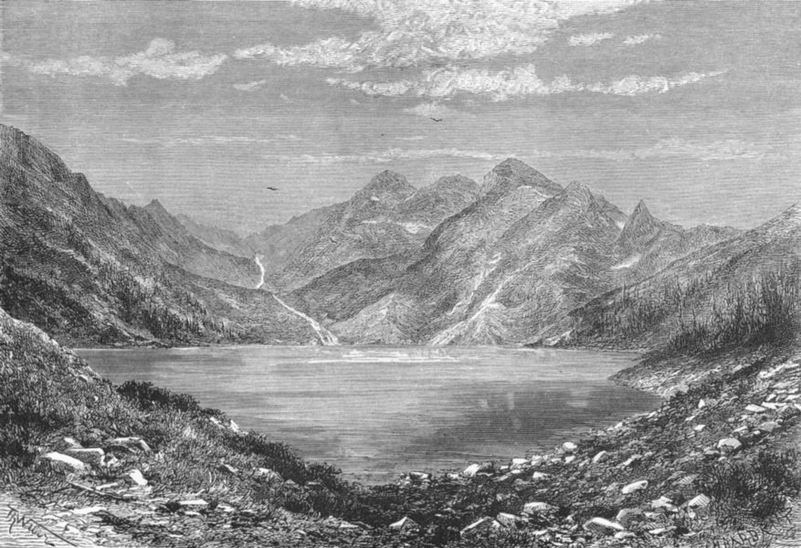 Associate Product HUNGARY. Fish lake(Ryby Stav) c1885 old antique vintage print picture