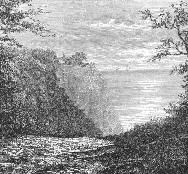 Associate Product GERMANY. Cliffs of Konigstuhl, Rugen c1885 old antique vintage print picture