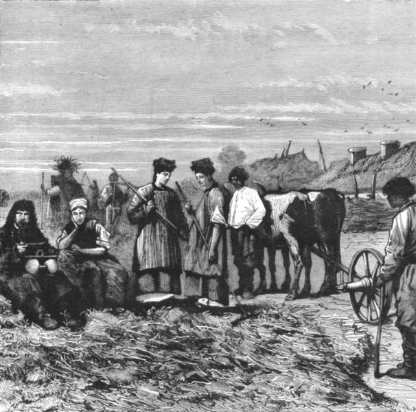 Associate Product UKRAINE. Haymaking in Ukrania c1885 old antique vintage print picture