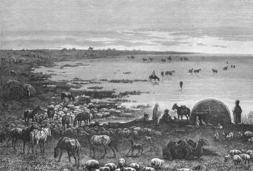 ASIA. Shores of Caspian c1885 old antique vintage print picture