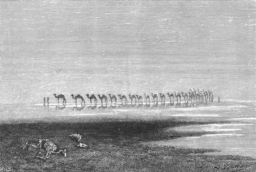 Associate Product PAKISTAN. Camels crossing Rann of catch c1885 old antique print picture