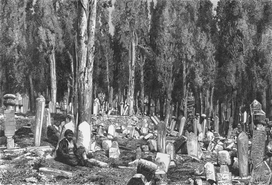 Associate Product TURKEY. Cypresses, Cemetery of Uskudar c1885 old antique vintage print picture