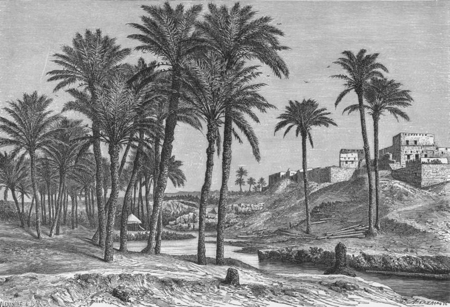 Associate Product EGYPT. Sefi Canal at Fidemin-el-Fayum c1885 old antique vintage print picture