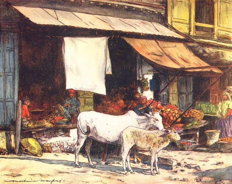 Associate Product INDIA. A fruit market, Delhi 1905 old antique vintage print picture