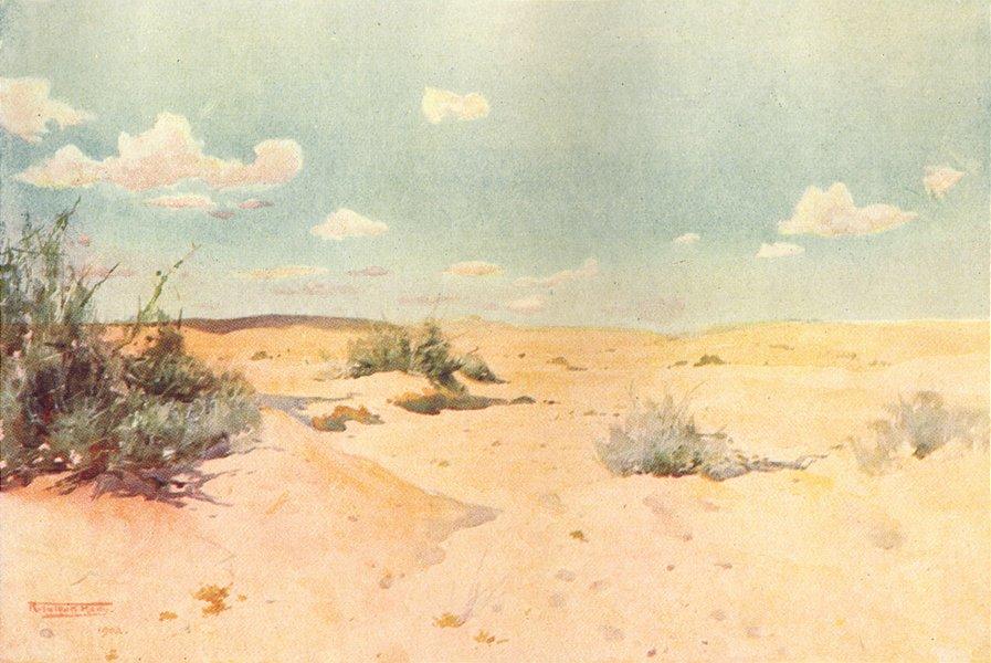 Associate Product EGYPT. A Desert study at Tel-el-Kebir 1912 old antique vintage print picture