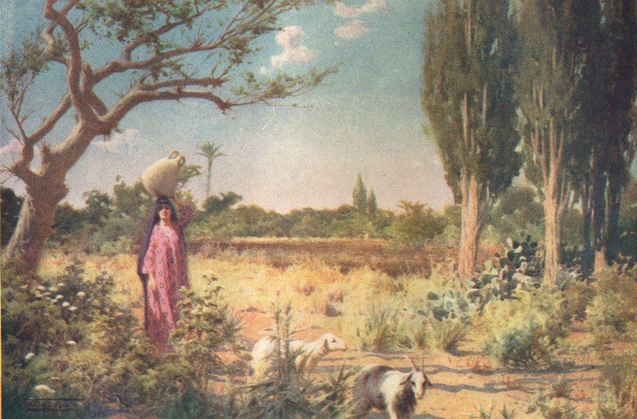Associate Product EGYPT. A Pastoral near Damietta 1912 old antique vintage print picture