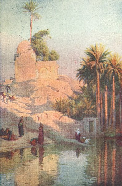 Associate Product EGYPT. In the Oasis of Fayum 1912 old antique vintage print picture