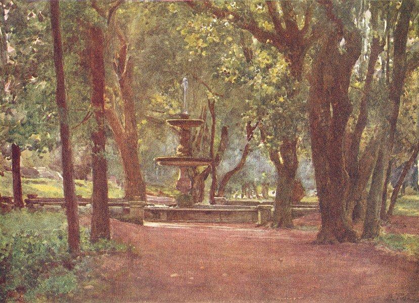 Associate Product VILLA BORGHESE. Ilex Ave Fountain(Fontana scura) 1905 old antique print