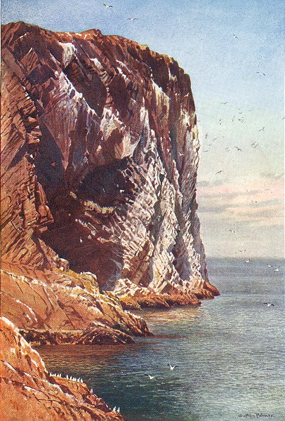 Associate Product BASS ROCK. Firth of Forth, Haddingtonshire 1904 old antique print picture