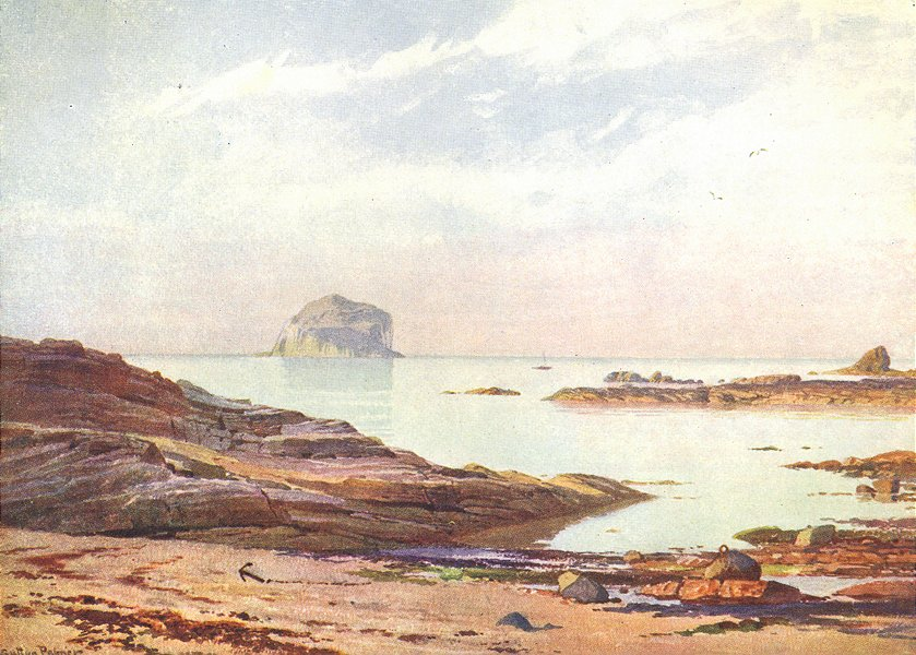 Associate Product SCOTLAND. Bass Rock-A Tranquil Evening 1904 old antique vintage print picture