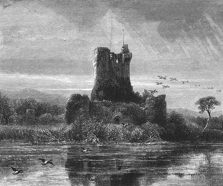 Associate Product IRELAND. Ross Castle, Killarney 1888 old antique vintage print picture