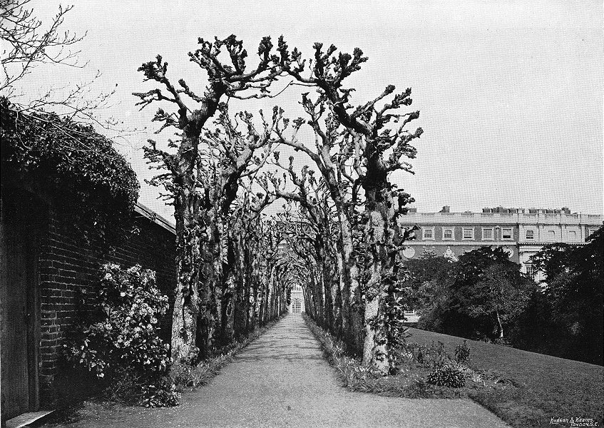 Associate Product HAMPTON COURT. Queen Mary's Bower & south Front 1897 old antique print picture