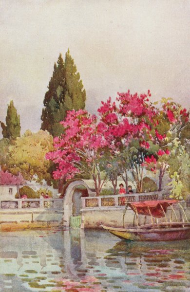 Associate Product ITALY. Lake Orta. A Garden by the Lake, Lago d'Orta 1905 old antique print