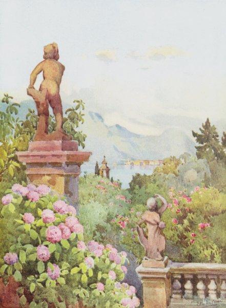 Associate Product ITALY. Lake. Lago di Maggiore. Hydrangeas, Isola Bella 1905 old antique print