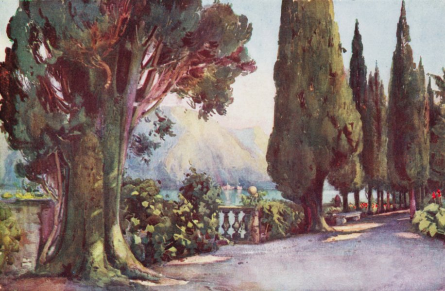 Associate Product ITALY. Lago di Como. Cypress Avenue, Villa del Pizzo 1905 old antique print