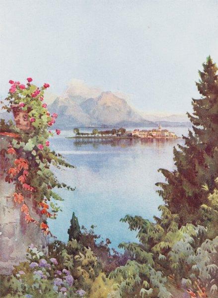 Associate Product ITALY. Lake Maggiore. A Garden, Baveno, Lago Maggiore 1905 old antique print