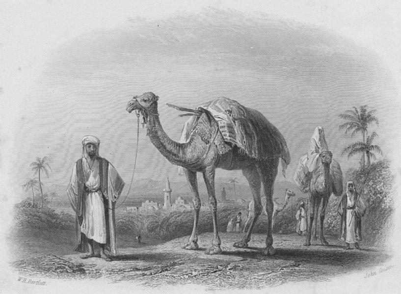 Associate Product ISRAEL. Scene near Ramla-Bartlett 1847 old antique vintage print picture